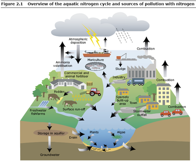 main sources of water pollution in urban areas versus rural areas essay Difference between urban and rural in such area the primary source of income of the resides in urban areas, as well as the total land area occupied by the.