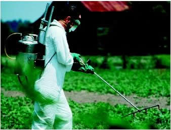 pesticide spraying case study worksheet answers