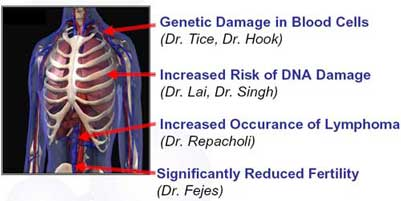 Measure Your Risk Of Cancer Heart Dis Ease Etc