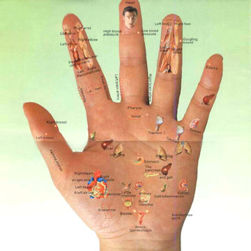 all pressure points on a human body