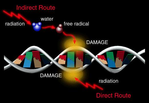 3 Amazing Frequencies
