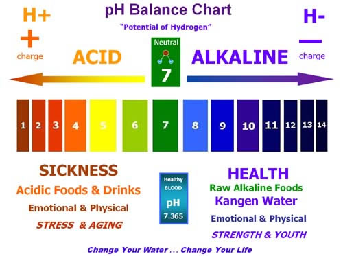 Why Should i check my PH levels