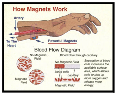 A Magnetic Bracelet Can Also Help To Bring More Oxygen The Blood Bringing Important Nutrients Damaged Cells In Body It Helps Dissolve